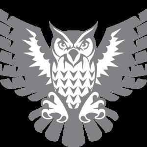 Sapientia Owl